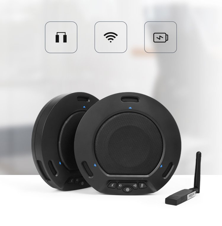 speakerphone video conference system